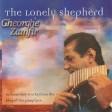 The Lonely Shepherd By Gheorghe Zamfir